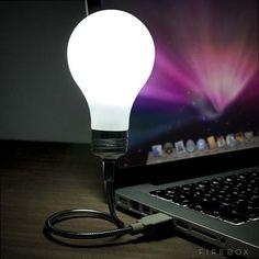 TECH GATE: The Bright Idea USB LED Light