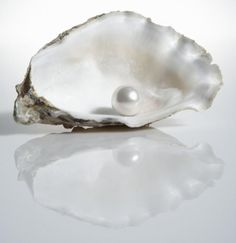 Pearl-June birthstone-primary 1415x2122px June Birthstone: Color and Meaning