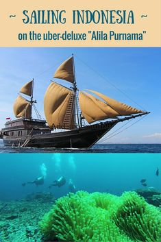 "Sailing, scuba diving in coral gardens, idyllic beach forays, and, oh my Komodo dragons! Cruising Indonesia aboard the stylish ""Alila Purnama"" is an amazing adventure! ~ http://www.sandinmysuitcase.com/alila-purnama-review-cruising-indonesia/"