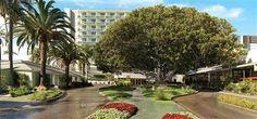 Fairmont Hotel - Santa Monica #ceremony #officiant #laweddingofficiants