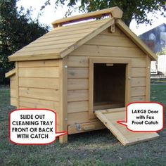 1000 images about chicken duck coop on pinterest coops for Duck house door size