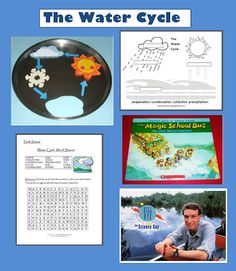 Water Cycle Activities and Resources