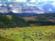Colorado explore