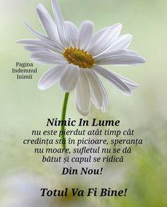 God Prayer, Motto, Prayers, Health Fitness, Faith, Messages, Quotes, Buddha, Image