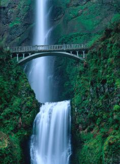 The beautiful Multnomah Falls is found in Oregon, USA. At this point along the Columbia River, the water drops in two major steps - the first 165m and the second 21m. Photo: Getty Images UK