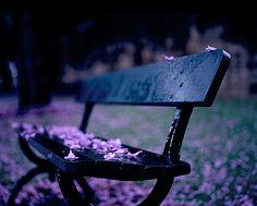 Peace <3. Love violet ~