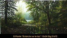 Eclaircie sur la lac Country Roads, Plants, Flora, Plant, Planting