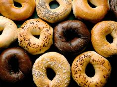 the 10 best bagel shops in nyc, via the gothamist