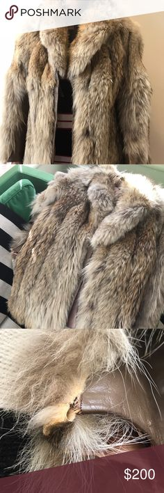 Coyote Fur Coat - Vintage Note: person who gave me this coat told me that this jacket is made of coyote fur. It is not in pristine condition like my other items. There is a slight tear in the right sleeve (wrist area). Real vintage - circa 1970s / 1980s. No holes that I can see. Offers are welcomed. Probably Made in Canada. Eatons used to be a luxury Canadian department store. Leather (sleeves) and fur. Vintage Jackets & Coats