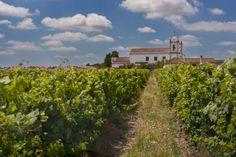 Ihre unvergessliche Hochzeit in Portugal: Casa Cadaval, die perfekte Location für Weinliebhaber aus aller Welt!