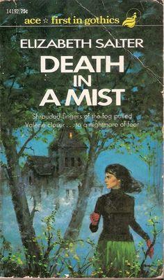 Elizabeth Salter - Death in a Mist