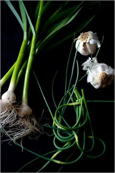 In season: green garlic, garlic scapes and mature heads. Photo: Andrew Scrivani for The New York Times