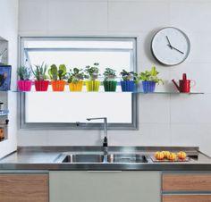 Como cultivar uma horta dentro de casa.