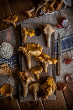 1000+ images about Wild food foraging on Pinterest | Fungi, Wild ...