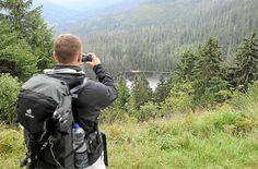 Freundeskreis Nationalpark Schwarzwald steht geschlossen hinter der Nationalparkverwaltung #ltwbw