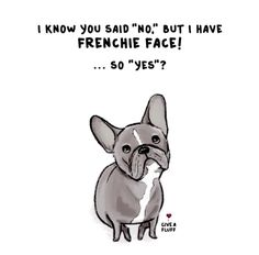 """I know you said 'NO', but I have Frenchie Face...so YES"" ha! French Bulldog Humour, illustration."