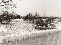 Ai mê rico Algarve!: Brrrrrrrrr que frio!