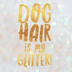 Dog hair is my glitter.  Letters2me-media