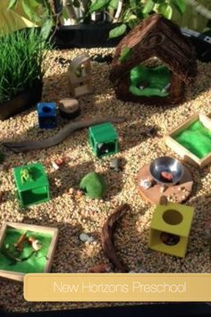 Exploring Pet Homes @ New Horizons Preschool