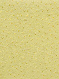 EMU CREAM #animal-skins #vinyl-faux-leather #yellow-gold