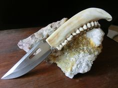 Deer Jaw bone, Stainless Steel Hunting Knife, Hand Tooled Sheath.