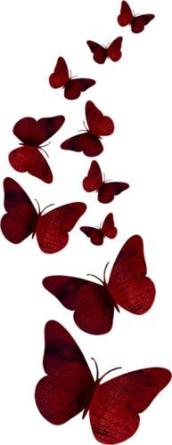 """Photo from album """"Райский сон"""" on Yandex. Flor Iphone Wallpaper, Butterfly Wallpaper, Wallpaper Backgrounds, Butterfly Kisses, Butterfly Art, Butterfly Stencil, Butterfly Pictures, Beautiful Butterflies, Cute Wallpapers"""