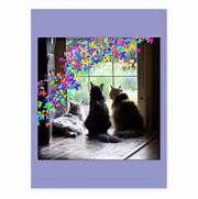 Rainbow Bridge cat condolence postcard | Zazzle