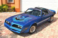 Pontiac Trans Am wallpaper titled blue 78