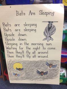 Great for nocturnal animals studies! Preschool Music, Fall Preschool, Preschool Classroom, Preschool Activities, Classroom Ideas, Halloween Songs, Halloween Activities, Preschool Halloween, Music For Kids