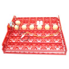 buy 36 eggs 144 birds eggs incubator tray chickens 1240 rpm or 2 5 rmin ducks and pigeons and other #egg #incubator