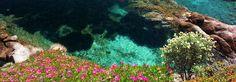 "Capo Sant'Andrea: The ""Island within the Island"""
