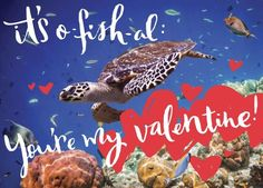NRDC GREEN GIFTS VALENTINE'S DAY E-CARDS ARE HERE! Order yours now: http://bit.ly/1uJwHnP.  Here's the perfect way to celebrate everyone special on your list this year and help save the planet we ALL love (and at $10 each, won't break the bank either). Below is one of our new additions to the collection for this year -- and already one of my personal favorites. So clever, don't you think? See all e-cards here: http://bit.ly/1uJwHnP.
