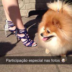 Já nos acompanha no Snap? Corre lá  tanarabrasil e acompanha as fotos de hoje  #shoesfirst #tanara #shoes #dogs
