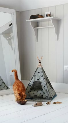 A fun little hideaway for your cat-- a cat teepee! It's fun for your pet but…