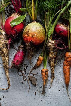 Fünf Rezepte aus der Gemüseküche