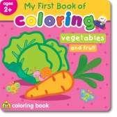 SchoolZone Toddler workbooks (age 2-3)