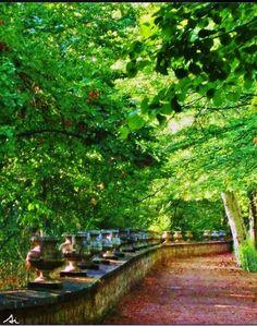 Aranjuez Royal Gardens. Spain