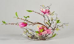 magnolia tulip ichibana flower arrangement - Yahoo Image Search Results