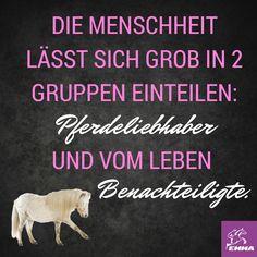 Pferdesprüche & Mineralfutter-emma-pferdefuttershop.de(4)
