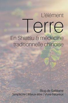 Découvrez l'importance de la Rate en médecine traditionnelle chinoise. La Rate est associée à l'élément de la Terre. La Rate gère l'alimentation. Découvrez comment prendre soin de votre Rate en médecine traditionnelle chinoise. Se soigner par le Shiatsu.