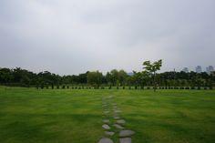 대전 한밭수목원 초원 greener, greener