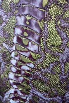 I like this reptile skin because of the mix of colours and the pattern.