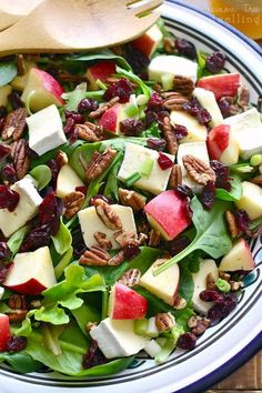 This Apple Brie Salad combines the crispness of apples with the creaminess of Brie cheese in a delicious salad that's perfect for winter! - Used blue cheese instead of brie. Easy Salad Recipes, Easy Salads, Healthy Salads, Summer Salads, Healthy Eating, Healthy Recipes, Dinner Salad Recipes, Vegetarian Salad Recipes, Dessert Recipes