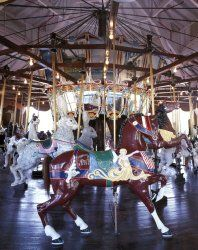 "Menagerie of Carousel Animals, Burlington, North Carolina - 16""x20"" - Fine-Art Gicl??e Photographic Print by Carol M. Highsmith"