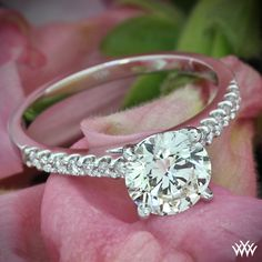 Petite Open Cathedral Diamond Engagement Ring with a 1.40ct Round Diamond