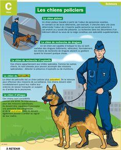 Fiche exposés : Les chiens policiers