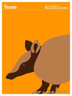 Texas Nine-banded Armadillo http://www.printcollection.com/collections/exclusive-state-of-america