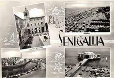 SENIGALLIA - Souvenir - Anni '60