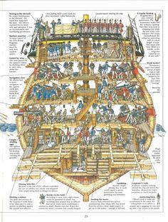 SHIPMAN :: Zobacz temat - Przekrój modelu / Sekcja / Section