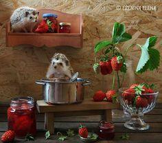 strawberry jam by Elena Eremina on 500px